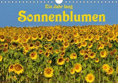 Ein Jahr lang Sonnenblumen (Wandkalender 2019 DIN A4 quer), Anke van Wyk
