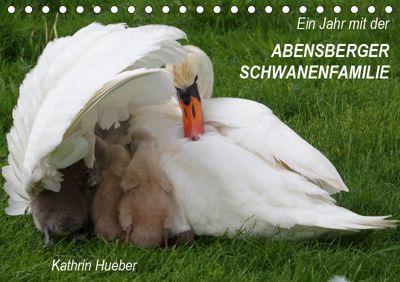 Ein Jahr mit der Abensberger Schwanenfamilie (Tischkalender 2019 DIN A5 quer), Kathrin Hueber