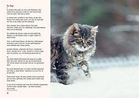 Ein Lesebuch für Katzenfreunde - Produktdetailbild 1