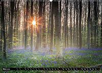 Ein neuer Tag beginnt (Wandkalender 2019 DIN A2 quer) - Produktdetailbild 3