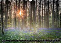 Ein neuer Tag beginnt (Wandkalender 2019 DIN A3 quer) - Produktdetailbild 3