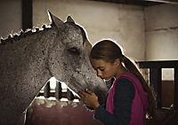 Ein Pferd für Klara - Produktdetailbild 2