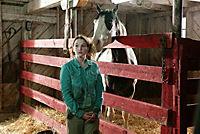 Ein Pferd für Moondance, DVD - Produktdetailbild 9
