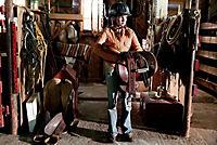 Ein Pferd für Moondance, DVD - Produktdetailbild 4