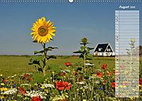 Ein Sommer auf Texel (Wandkalender 2019 DIN A2 quer) - Produktdetailbild 11
