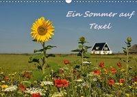 Ein Sommer auf Texel (Wandkalender 2019 DIN A3 quer), Bettina Hackstein