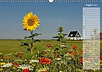 Ein Sommer auf Texel (Wandkalender 2019 DIN A3 quer) - Produktdetailbild 8