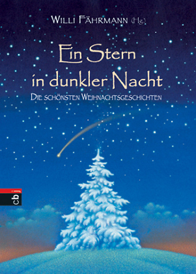 Ein Stern in dunkler Nacht Buch bei Weltbild.de online bestellen