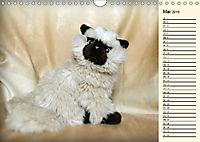 Ein Teddybär und seine Freunde (Wandkalender 2019 DIN A4 quer) - Produktdetailbild 5