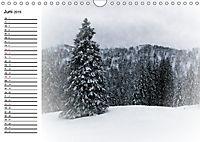 Ein Wintermärchen auf der Hemmersuppenalm (Wandkalender 2019 DIN A4 quer) - Produktdetailbild 6