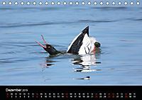 Einblicke in die Welt der Säger (Tischkalender 2019 DIN A5 quer) - Produktdetailbild 12