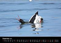 Einblicke in die Welt der Säger (Wandkalender 2019 DIN A3 quer) - Produktdetailbild 12