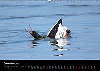 Einblicke in die Welt der Säger (Wandkalender 2019 DIN A2 quer) - Produktdetailbild 12