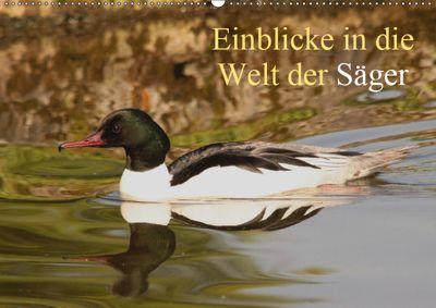 Einblicke in die Welt der Säger (Wandkalender 2019 DIN A2 quer), Winfried Erlwein