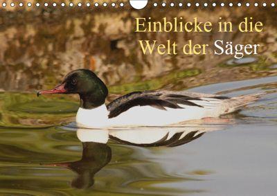 Einblicke in die Welt der Säger (Wandkalender 2019 DIN A4 quer), Winfried Erlwein