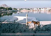 Eine Reise durch Rajasthan (Wandkalender 2019 DIN A3 quer) - Produktdetailbild 2