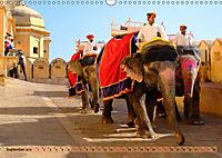 Eine Reise durch Rajasthan (Wandkalender 2019 DIN A3 quer) - Produktdetailbild 9