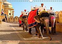 Eine Reise durch Rajasthan (Wandkalender 2019 DIN A4 quer) - Produktdetailbild 9