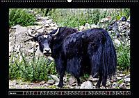 Eine Rundreise durch Tibet (Wandkalender 2019 DIN A2 quer) - Produktdetailbild 5