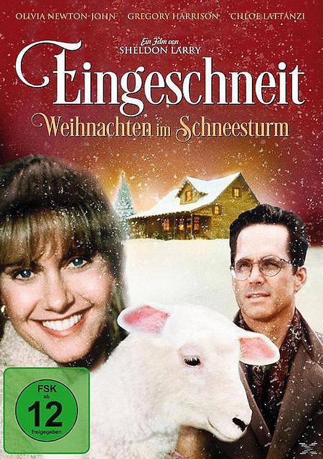 Eingeschneit - Weihnachten im Schneesturm DVD | Weltbild.at
