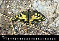 Einheimische Tagfalter (Tischkalender 2019 DIN A5 quer) - Produktdetailbild 3