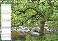 Einsame Natur - Terminkalender (Tischkalender 2019 DIN A5 quer) - Produktdetailbild 5