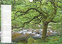 Einsame Natur - Terminkalender (Wandkalender 2019 DIN A4 quer) - Produktdetailbild 5
