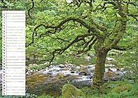 Einsame Natur - Terminkalender (Wandkalender 2019 DIN A3 quer) - Produktdetailbild 5