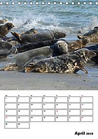 Einzigartige Insel Helgoland (Tischkalender 2019 DIN A5 hoch) - Produktdetailbild 4