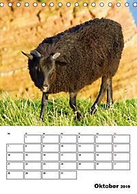 Einzigartige Insel Helgoland (Tischkalender 2019 DIN A5 hoch) - Produktdetailbild 10