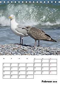 Einzigartige Insel Helgoland (Tischkalender 2019 DIN A5 hoch) - Produktdetailbild 2