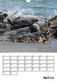 Einzigartige Insel Helgoland (Wandkalender 2019 DIN A4 hoch) - Produktdetailbild 1