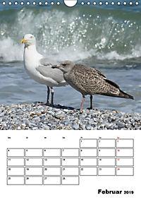 Einzigartige Insel Helgoland (Wandkalender 2019 DIN A4 hoch) - Produktdetailbild 2
