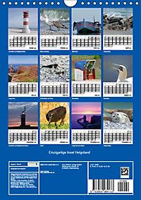 Einzigartige Insel Helgoland (Wandkalender 2019 DIN A4 hoch) - Produktdetailbild 13