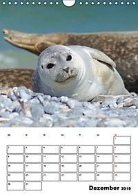 Einzigartige Insel Helgoland (Wandkalender 2019 DIN A4 hoch) - Produktdetailbild 12