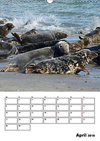 Einzigartige Insel Helgoland (Wandkalender 2019 DIN A3 hoch) - Produktdetailbild 4