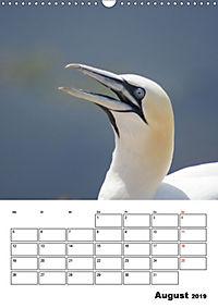 Einzigartige Insel Helgoland (Wandkalender 2019 DIN A3 hoch) - Produktdetailbild 8