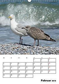 Einzigartige Insel Helgoland (Wandkalender 2019 DIN A3 hoch) - Produktdetailbild 2