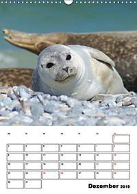 Einzigartige Insel Helgoland (Wandkalender 2019 DIN A3 hoch) - Produktdetailbild 12