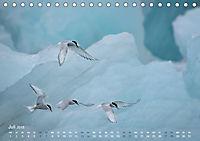 EISLand - Eine Islandreise durch Schnee und Eis (Tischkalender 2019 DIN A5 quer) - Produktdetailbild 7