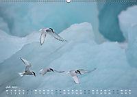 EISLand - Eine Islandreise durch Schnee und Eis (Wandkalender 2019 DIN A2 quer) - Produktdetailbild 7