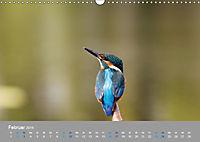 Eisvögel - emotionale Momente mit den fliegenden Edelsteinen (Wandkalender 2019 DIN A3 quer) - Produktdetailbild 2