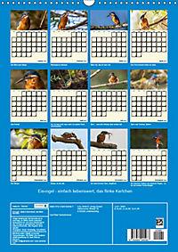 Eisvogel - einfach liebenswert, das flinke Kerlchen (Wandkalender 2019 DIN A3 hoch) - Produktdetailbild 13