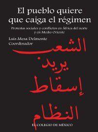 El pueblo quiere que caiga el régimen, Luis Mesa del Monte