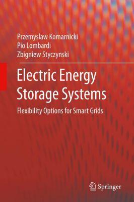 Electric Energy Storage Systems, Zbigniew Styczynski, Pio Lombardi, Przemyslaw Komarnicki