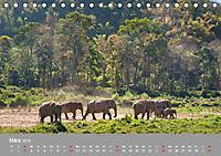 ELEFANTEN Asiens sanfte Riesen (Tischkalender 2019 DIN A5 quer) - Produktdetailbild 3