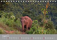 ELEFANTEN Asiens sanfte Riesen (Tischkalender 2019 DIN A5 quer) - Produktdetailbild 8