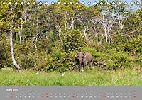 ELEFANTEN Asiens sanfte Riesen (Tischkalender 2019 DIN A5 quer) - Produktdetailbild 6