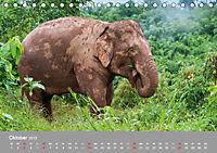 ELEFANTEN Asiens sanfte Riesen (Tischkalender 2019 DIN A5 quer) - Produktdetailbild 10