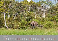ELEFANTEN Asiens sanfte Riesen (Wandkalender 2019 DIN A4 quer) - Produktdetailbild 6